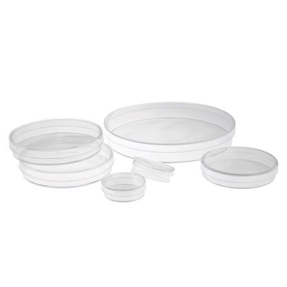 TISSUE CULTURE DISHES
