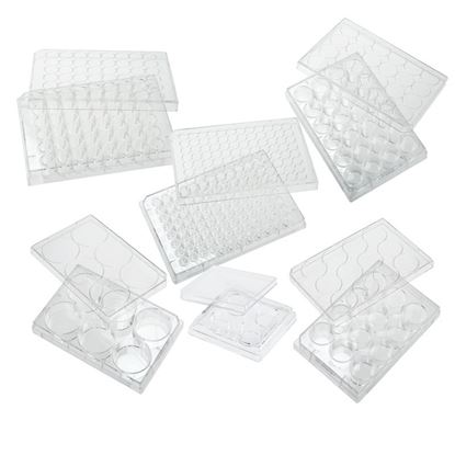 PLATES, NON-TREATED, FLAT BOTTOM, STERILE, WITH LIDS