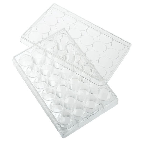 PLATES, NON-TREATED, 24 WELL, FLAT BOTTOM, STERILE, WITH LIDS