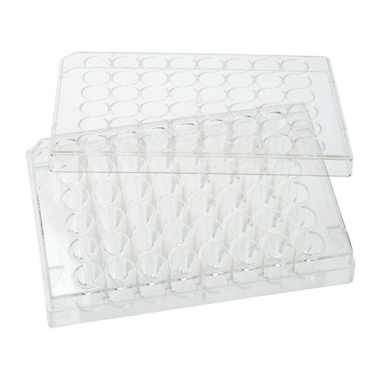 PLATES, NON-TREATED, 48 WELL, FLAT BOTTOM, STERILE, WITH LIDS